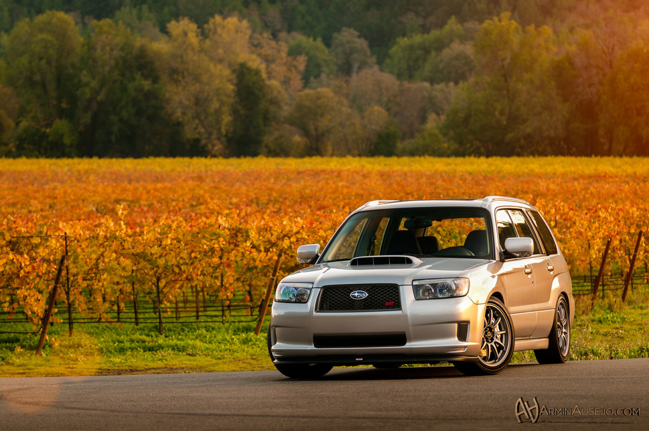 Fiine Line Imports' Forester STI