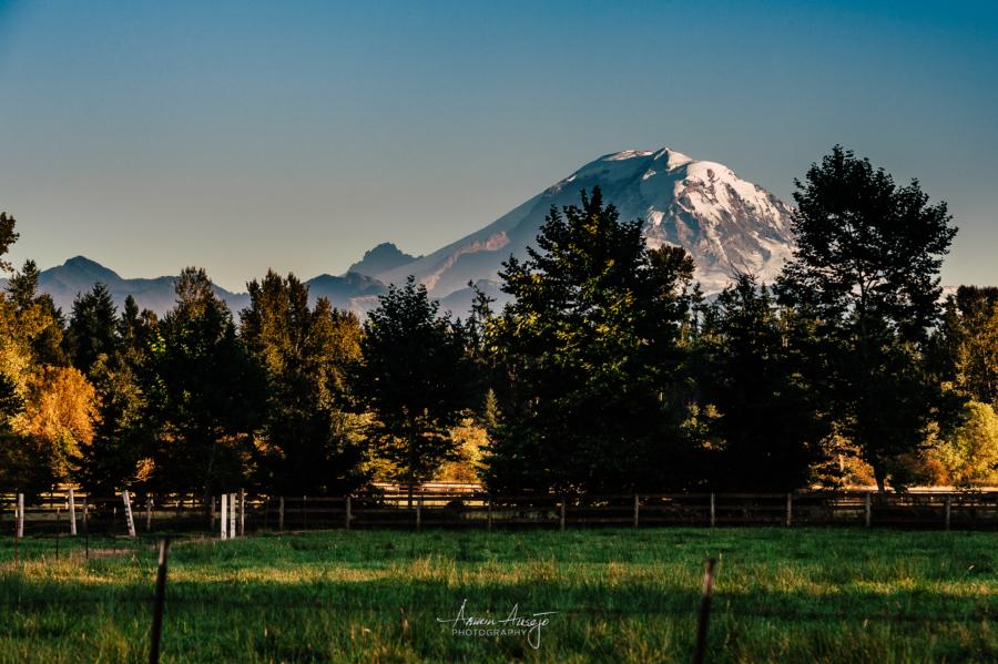 Mt. Rainier from Enumclaw, 2014