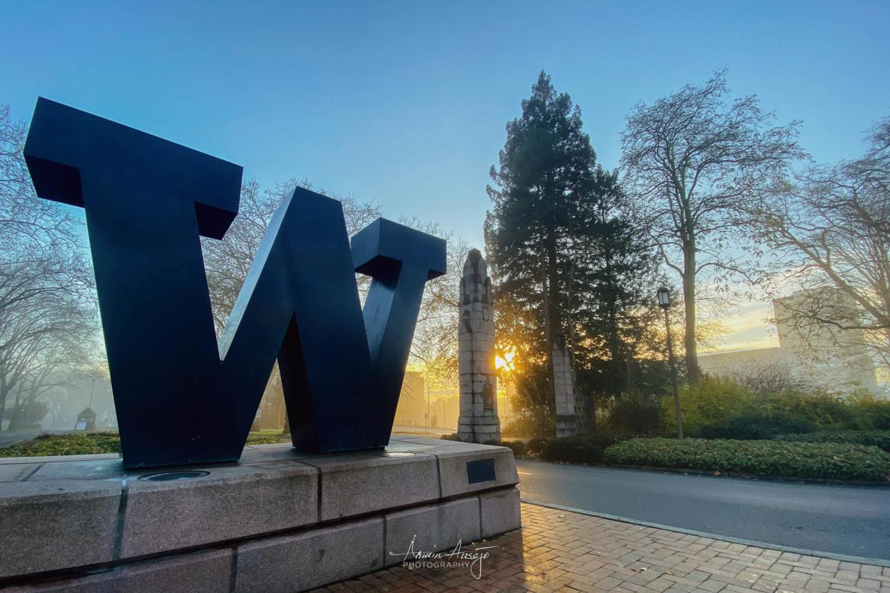 Fog covering the University of Washington, November 2020