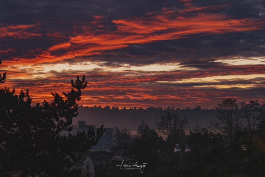 Fire in the sky, November 2020