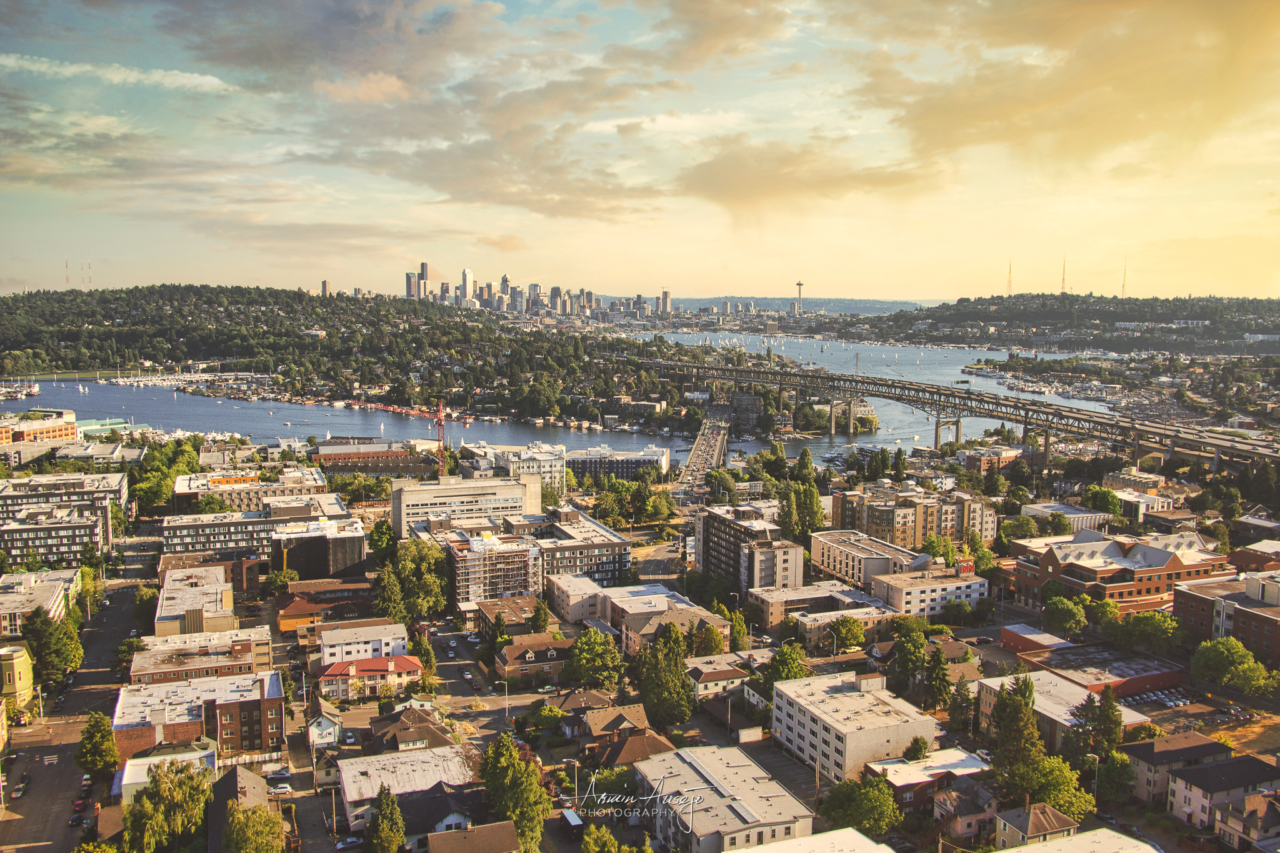 Downtown Seattle from UW Tower, 2014