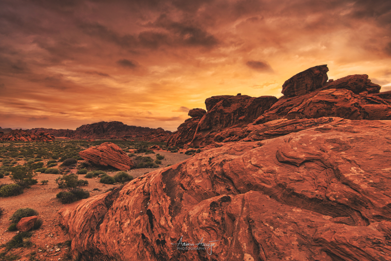 The Valley of Fire, 2017